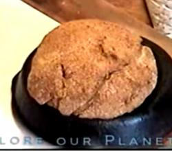Whole Wheat Pioneer Bread